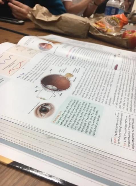AP Psych Text Book