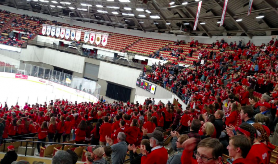 Arrowhead students support the AHS Varsity boys hockey team at the State Game.