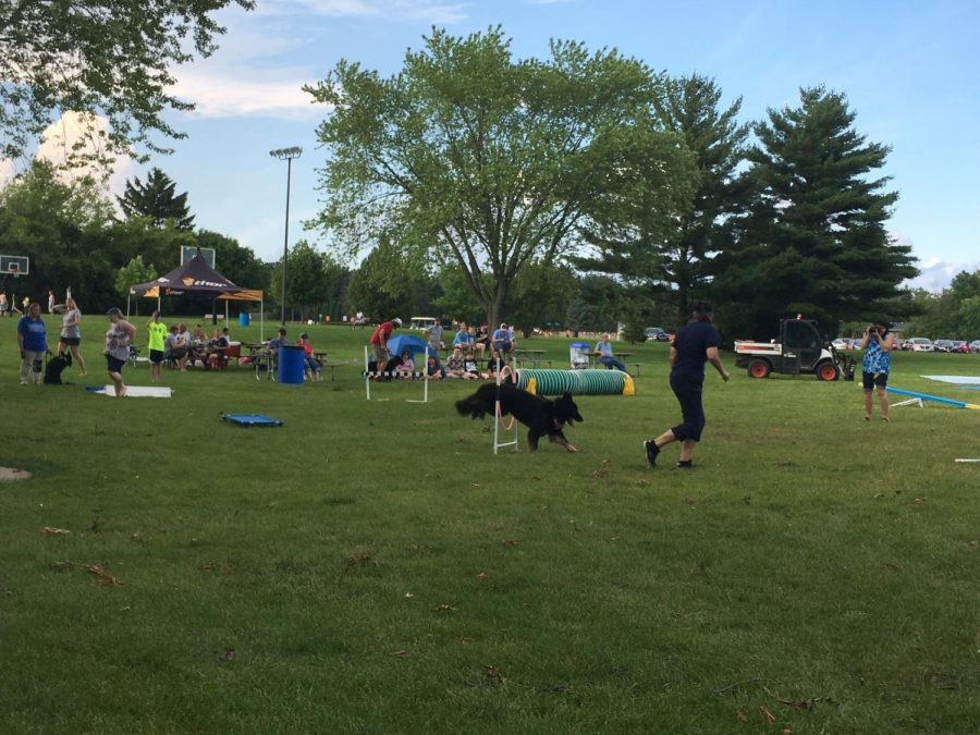 Arrowhead Students Invited to German Shepherd Club Events